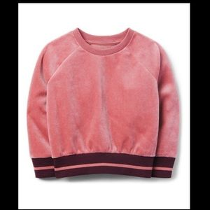 NWT Gymboree Dusty Rose Velour Sweatshirt